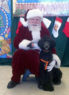 Joey and Santa